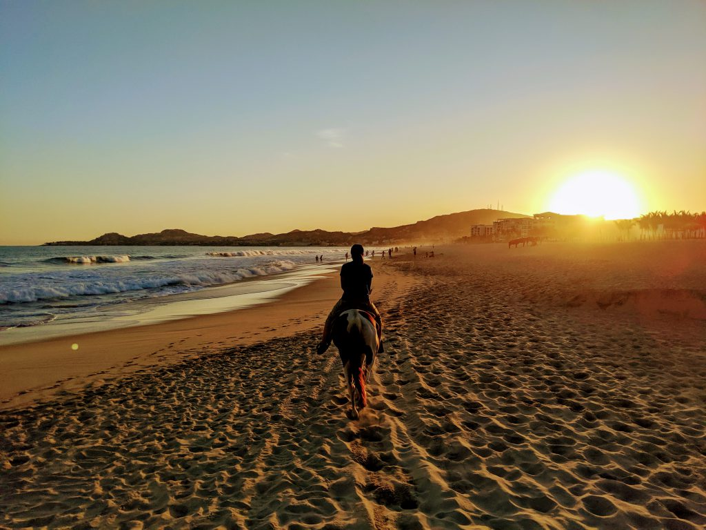 Horseback riding on the beach in Los Cabos