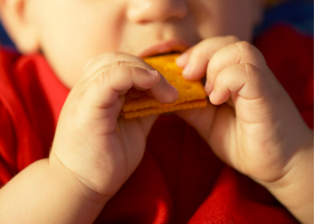 Toddler eating a cracker- airplane snacks for toddlers