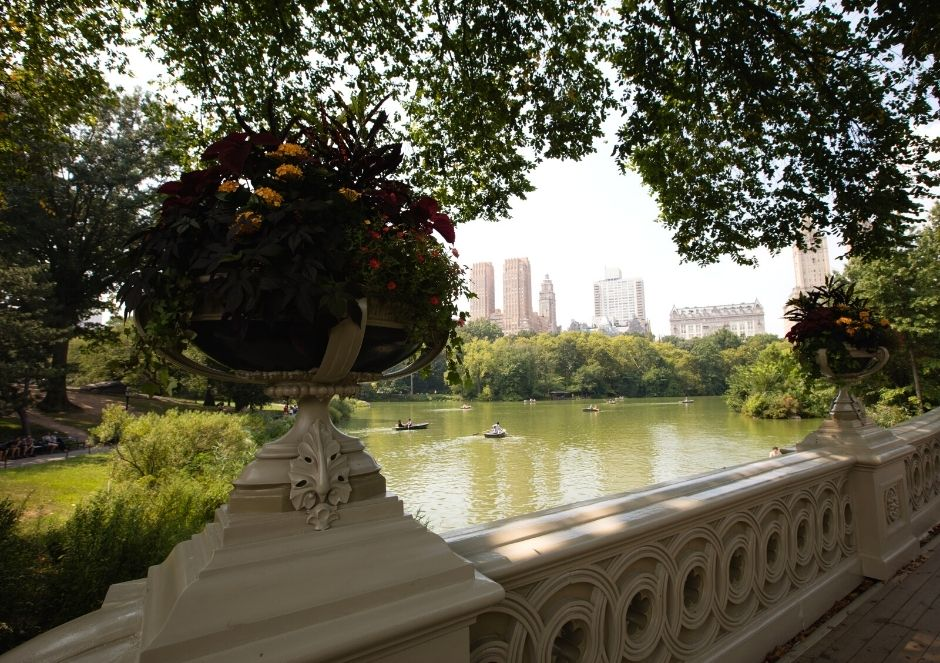 Bridge in Central Park- New York City with a Baby