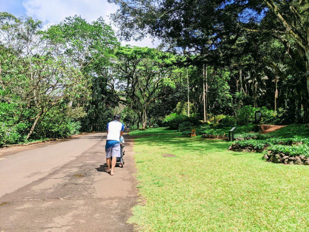 The path leading to Waimea Falls