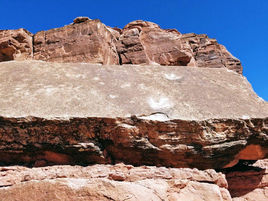 Dinosaur prints on a rock